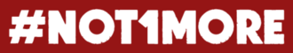 N1m logo