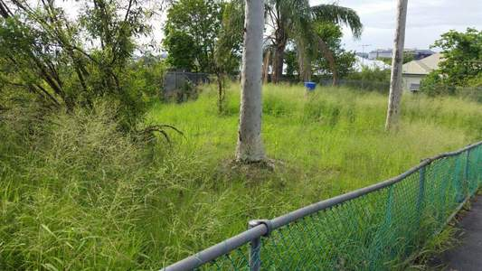 Stop blocking a community garden, QLD Dept. of Main Roads