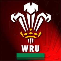WRU Change your logo to the Welsh Dragon