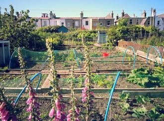 Save Craigentinny & Telferton Allotments
