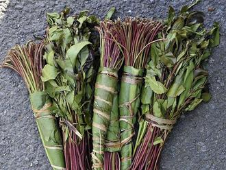 Lift the ban on khat