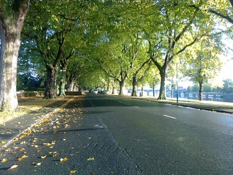 Keep Victoria Embankment free from parking charges and orders.