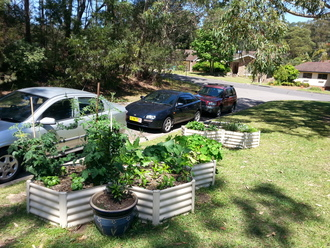UPDATE GOSFORD CITY COUNCIL POLICY TO ALLOW VERGE GARDENS IN RESIDENTIAL AREAS