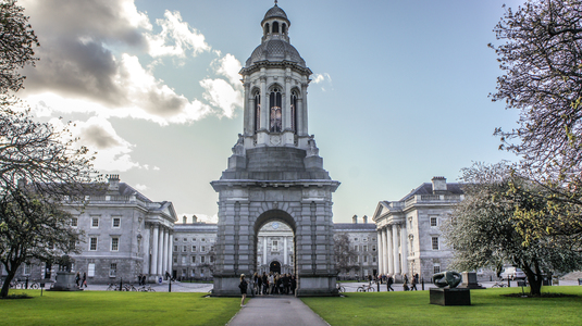Trinity College, University of Dublin, Fossil Fuel Divestment