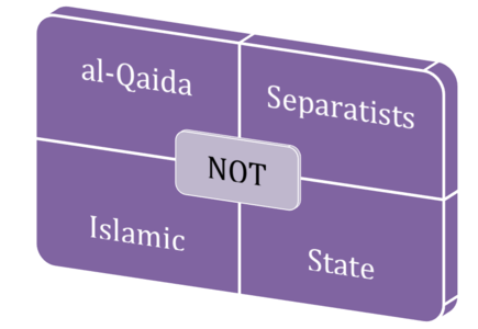 Stop calling IS ISLAMIC State. They don't represent Islam.