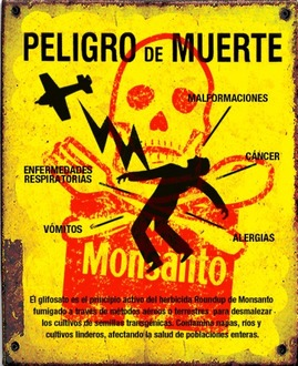 NO a Monsanto - Chile