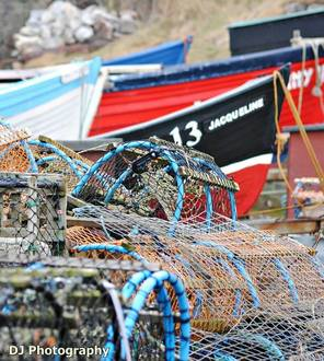 Save the fishing community of Cove Harbour