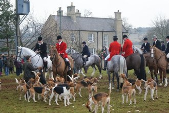 Call Belvoir Hunt to Account