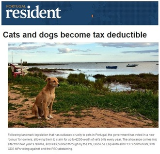 Pets, Vets and Tax - UK Should Follow Portugal's Lead