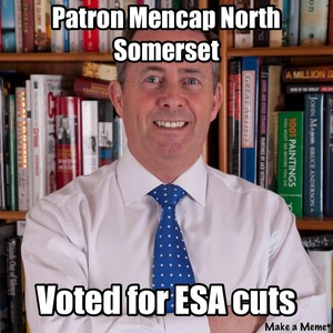 Liam Fox please resign as Patron of Mencap North Somerset