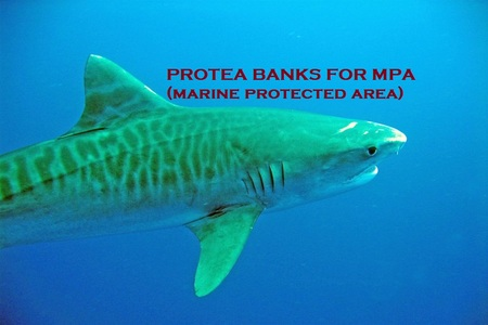 MPA NEEDED FOR PROTEA BANKS, SOUTHAFRICA
