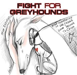 Justice for Greyhounds
