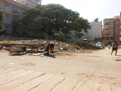 MLA N.A Haris - Arrange to remove garbage dumps that has been settling in Shanti Nagar