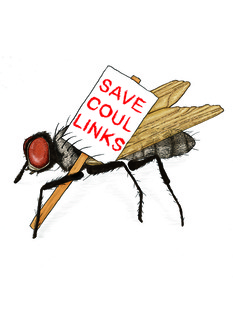 Save coul links2 jamie mackay