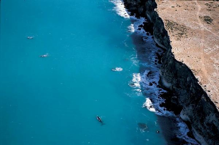 Stop BP's plans to drill for oil in the Great Australian Bight