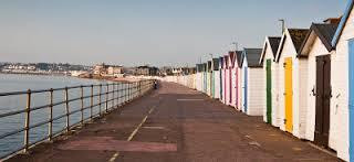 Torbay about to Fleece Disabled people - Will your council do the same?