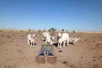 We support Federal Drought Assistance for Aussie farmers!