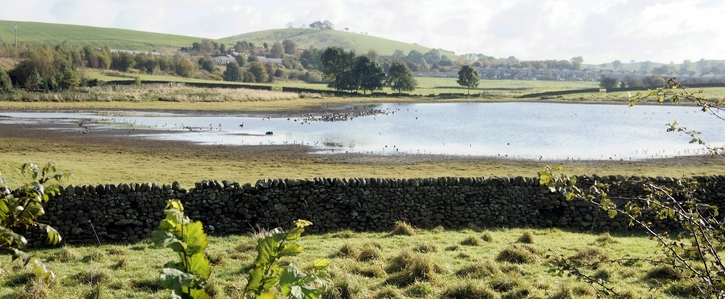 Stop the Desecration of  North Yorkshire's Hellifield Flashes