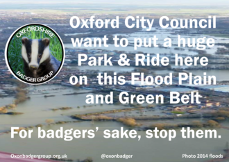 Save badgers : abandon Seacourt Park & Ride plans