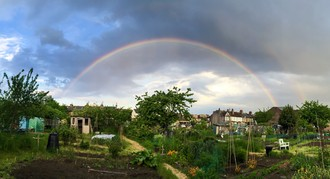 Save London's oldest allotments!