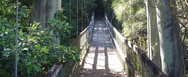 Save the Upper River footbridge in Kangaroo Valley