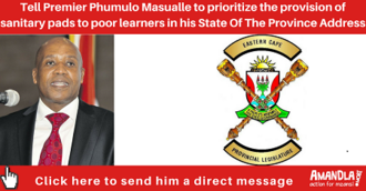 Prioritize sustainable provision of sanitary pads in quintile 1-3 schools in the Eastern Cape