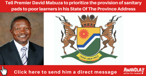 Prioritize sustainable provision of sanitary pads in quintile 1-3 schools in Mpumalanga