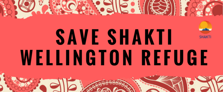 Save Shakti Wellington Refuge
