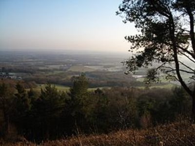 Urgent. Save an Area of Outstanding Natural Beauty - Leith Hill, Surrey.