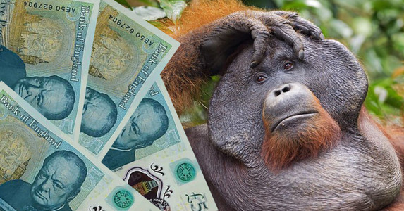 Don't use palm oil in banknotes