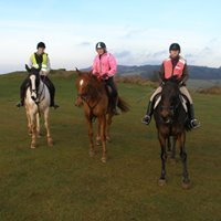 Keep Horse Riding on Cothelstone Hill