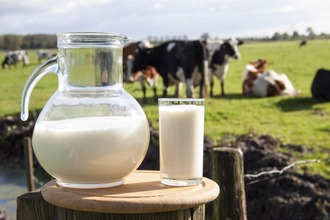Freedom to buy and sell Raw milk in any food shop