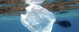 Replace plastic bags with paper bags