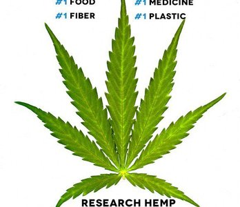 Make hemp happen
