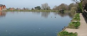 Reverse the decision to close the Flour Mill Pond to anglers