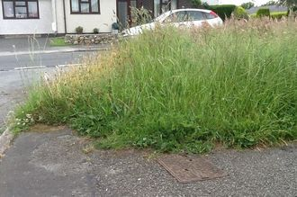 Cut the Grass Verges In Lincolnshire
