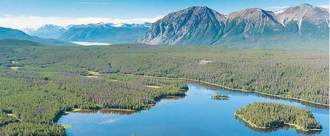 Save Fish Lake