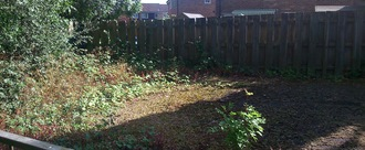 Allow Southwater residents to use derelict Council land for a Community Garden
