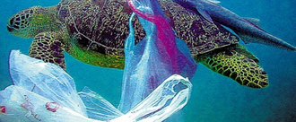 Ban ALL plastic carrier bags