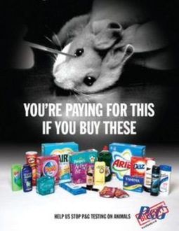 Make companies that test on animals have to state it on their packaging