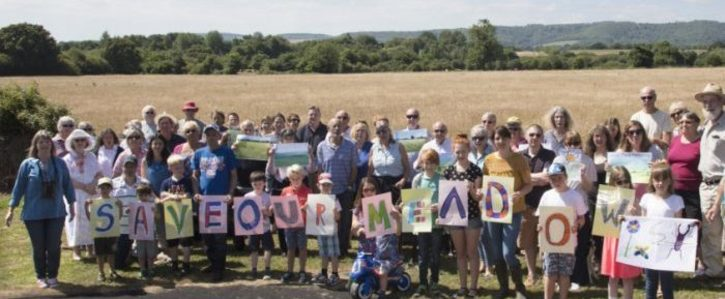 Save Coldwaltham's flower-rich hay meadow.