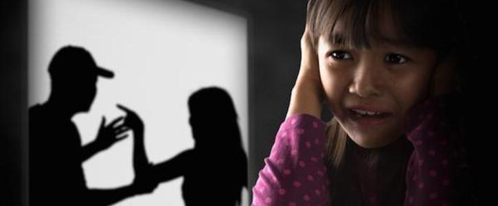 Introduce a law so that parental rights are reduced if there is a proven background of abuse.