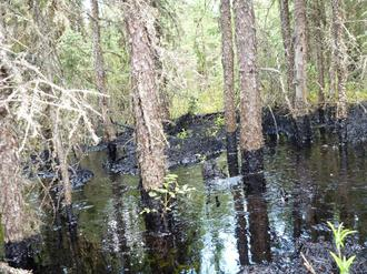 Save Cold Lake From Out-Of-Control Oil Sands Drilling