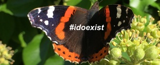 #idoexist - Give domestic violence survivors emergency identification