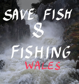 Give Welsh Fishing Clubs and Salmon and Seatrout a Chance