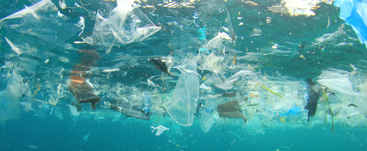 Introduce a tax (levy) on throwaway plastic