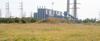 For Bugs' Sake - Stop Tilbury Expansion
