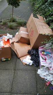 Tower Hamlets Inadequate Waste Collection