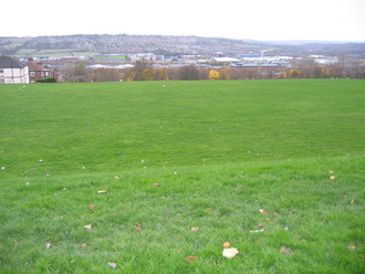 Field from armstrong road 1 006
