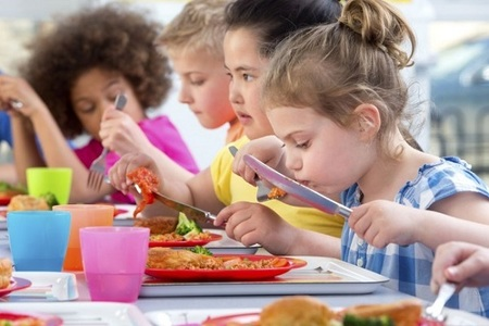 Eat Right Be Bright - School Lunch for All Kiwi Kids